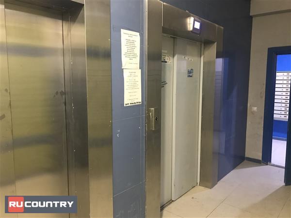 Новая 2 х комнатная квартира в ЖК Три Кита 2 в Мурино : RUcountry